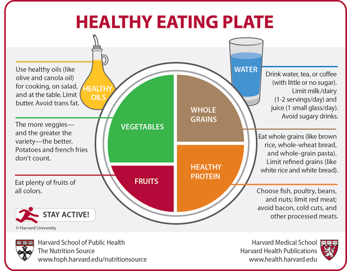 Harvard vs. USDA–Dishing Out Controversy Over Dietary Guidelines ...