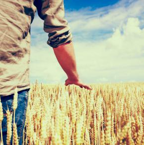 Environmental Working Group publishes a database of farm subsidies.