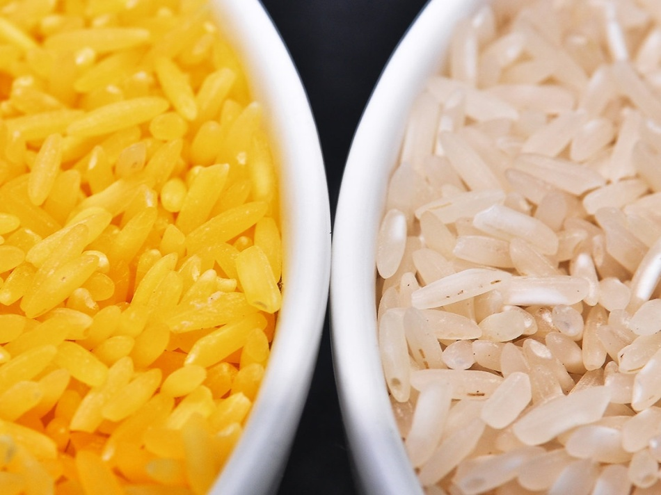 Isagani Serrano/International Rice Research Institute