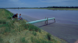 Manure lagoon (Source: USDA).