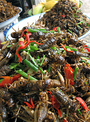 Fried_insects_for_sale_in_Cambodia.jpg