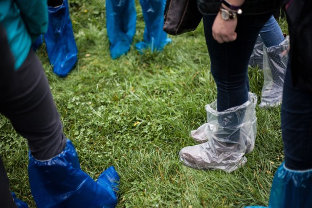 Before entering any of the barns at Fairchild Dairy, we slip plastic disposable boots over our footwear. This is a biosecurity measure meant to prevent the spread of pathogens to or from the farm animals. Photo: Kathleen Nay