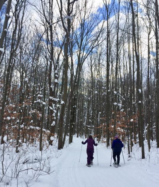 Sara Scinto Snowshoeing Massachusetts