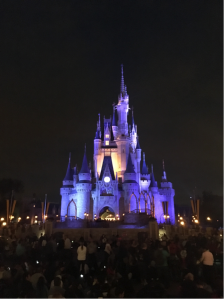 Not food, but I had to throw in a photo of Cinderella's castle at night! (Image source: Author)