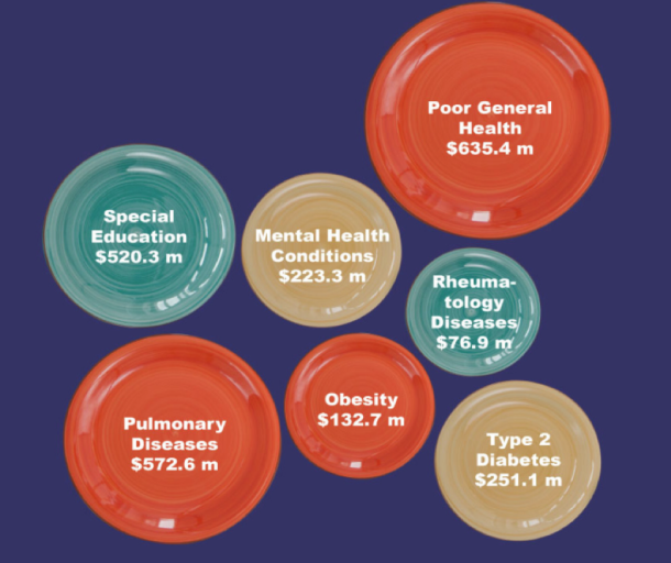 Costs of various diseases and poor health outcomes caused by hunger, as estimated by the study. (Image: MACostOfHunger.org)