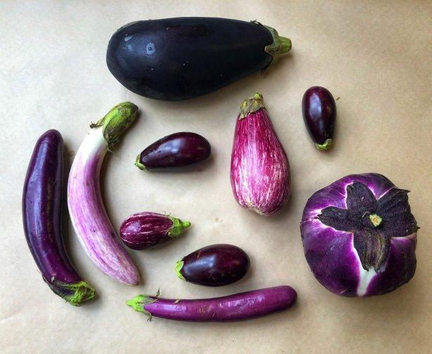 russos eggplant