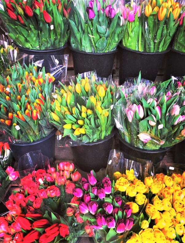 russos flowers